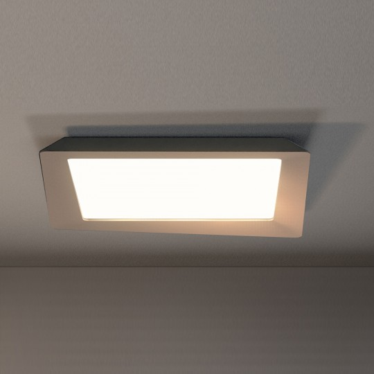 Crazy LED Tourterelle/Blanc